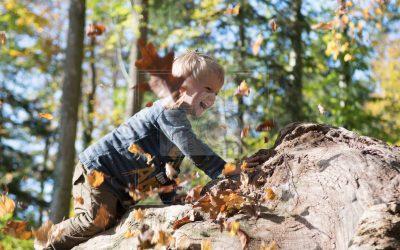 Herbst & Familienshooting